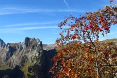 Alpstein