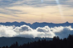 Blick zum Bregenzerwald