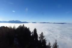 Schwarzenberg-Runde