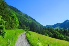 Weg vom Karren zum Staufen