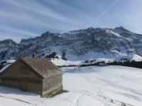 Kronberg Winterwanderung